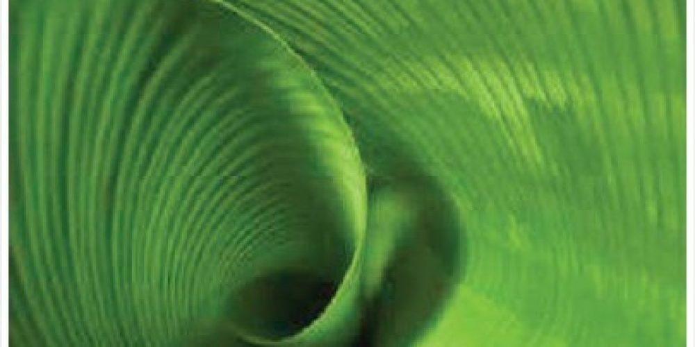 Mon roman sur la spirale dynamique